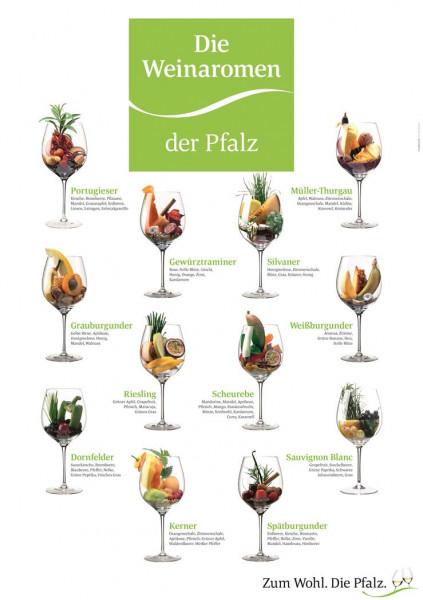 Plakat »Die Weinaromen der Pfalz«