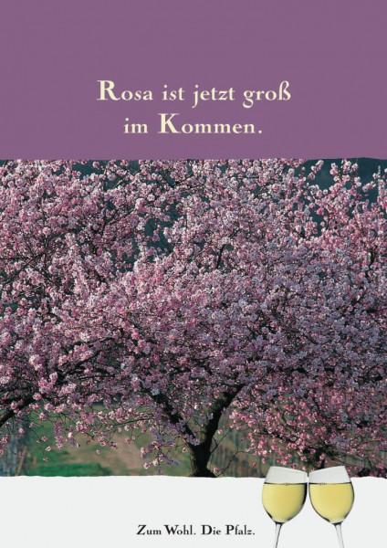 Plakat »Rosa ist jetzt groß im Kommen.«
